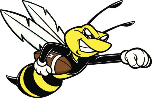 吉祥物,蜜蜂,美式橄榄球运动,拳头,美式足球,大黄蜂,昆虫,团体性运动,茄克,黄色