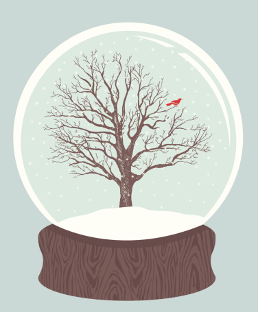 鸟类,雪花球,雪,极简构图,季节,翅膀,地形,矢量,天气,古典式
