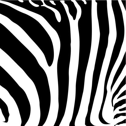 矢量,格子图案,黑色,斑马纹,毛皮,动物,动物斑纹,背景,抽象,式样