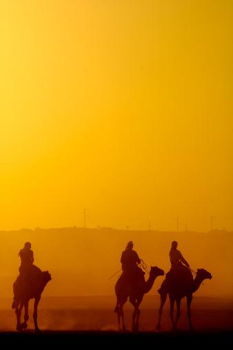 劳作动物,阿拉伯,灰尘,人,动物主题,家畜,万里无云,三只动物,户外,地形