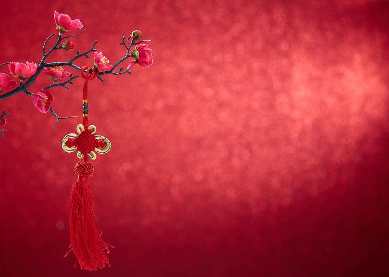 春节,中国结,李子,红色,花朵,背景,背景虚化,贞德,花,装饰
