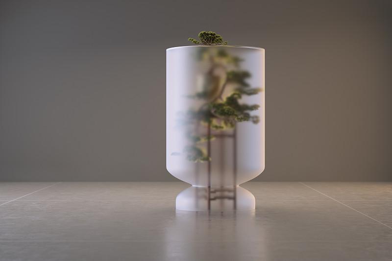 盆景,圆顶建筑,玻璃,在下面,底座,青铜,一个物体,背景分离,花盆,地板