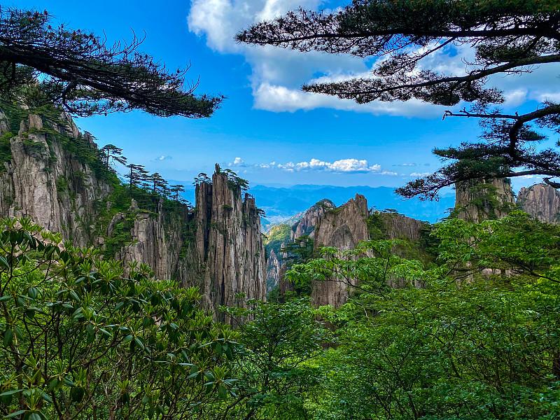 中国,自然美,山,莫斯特,黄山,云景,世界遗产,云,著名景点,松树