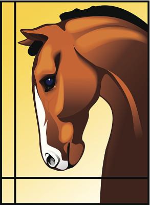 种马,红棕色马,褐色,无人,侧面像,绘画插图,哺乳纲,运动,彩色图片,动物