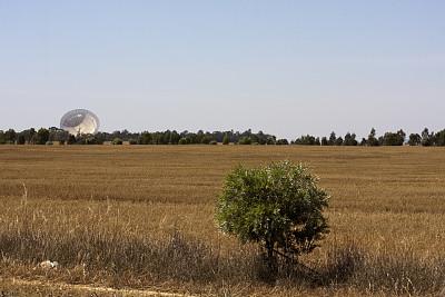 射电望远镜,新南威尔士,澳大利亚,,天文望远镜,天文台,雷达,科技,全球通讯,夏天