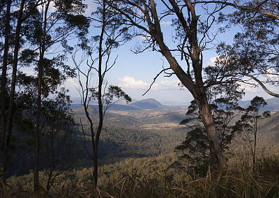 桉树,山,远距离,云,草,自然美,丘陵,澳大利亚,户外,自然