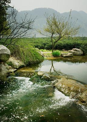 地形,中国,河流,杭州,垂直画幅,茶树,岩石,无人,夏天,户外