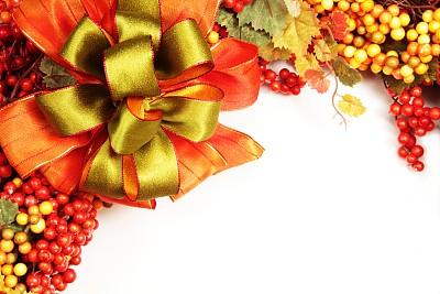 秋天,蝴蝶结,浆果,水平画幅,绿色,橙色,无人,白色背景,背景分离,白色