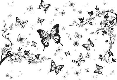 蝴蝶,绘画插图,天空,美,古典式,动物身体部位,夏天,计算机制图,计算机图形学,图像