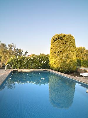 游泳池,多拉达海岸,塔拉戈纳省,酒店游泳池,三角梅,垂直画幅,水,天空,留白,度假胜地