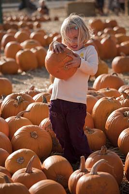 南瓜,南瓜地,垂直画幅,金色头发,秋天,拿着,户外,女孩,2岁到3岁,美国中西部地区