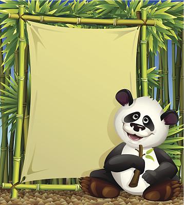 熊猫,矢量,背景,乐趣,笋,自然,绿色,可爱的,绘画插图