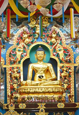 金佛寺,垂直画幅,灵性,佛,寺庙,无人,雕像,印度,图像