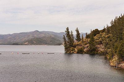 湖,水边,自然,水,美国,浮标,湖岸,水平画幅,无人,户外