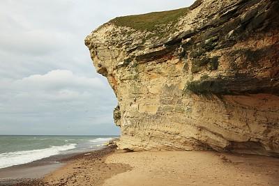 悬崖,鸟类,丹麦,三趾鸥,日德兰半岛,自然,水平画幅,无人,自然地理,户外