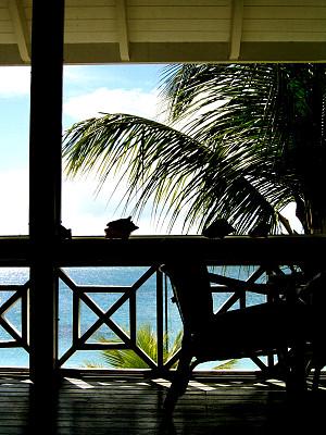 棕榈树,游廊,垂直画幅,门廊,无人,椅子,阳台,热带气候,建筑特色,生活方式