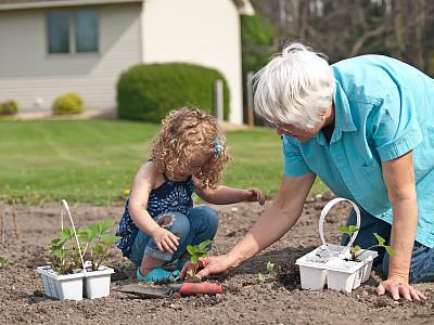草莓,菜园,女孩,祖母,长卷发,65到69岁,选择对焦,学龄前,多代家庭,水平画幅