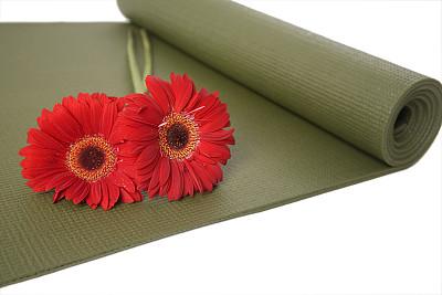 健身垫,防护品,美,健身设备,禅宗,休闲活动,水平画幅,spa美容,健康,仅一朵花
