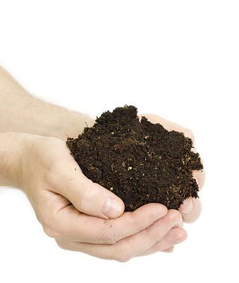 肮脏的,手,拿着,分离着色,菜园,表层土,捧着,泥炭,堆肥,垂直画幅