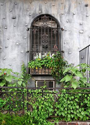 窗户,城市生活,窗台花箱,垂直画幅,有蔓植物,无人,铁,城市,安全护栏,常春藤