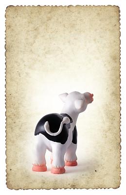 边框,古老的,母牛,明信片,弗里斯兰奶牛,垂直画幅,斑点,小牛,摇滚乐,黑色
