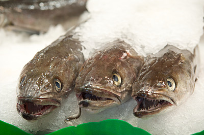 鱼市,大虾,粉鲑,鱿鱼寿司,白鲑,鱼贩,海豚鱼,巴勒莫,墨鱼,黑鲈