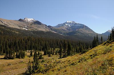 赤脊山脉,阿根廷冰川国家公园,鹰,羽毛,美国冰河国际公园,自然,草地,蒙大拿州,水平画幅,地形