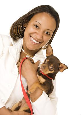 狗,非洲人,女商人,拿着,垂直画幅,健康,套装,非裔美国人,仅成年人