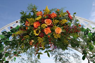 天空,延龄草,饮食,水平画幅,枝繁叶茂,地形,蓝色,玫瑰,拱门,肖像