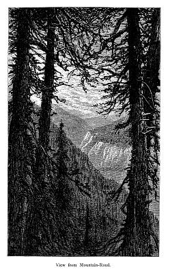 佛蒙特,山,风景,曼斯菲尔德山,垂直画幅,古董,无人,绘画插图,古典式,英格兰