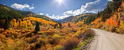 秋天,全景,山谷,落基山国家公园,科罗拉多州,白杨类,美国西部,洛矶山脉,柳树,水平画幅