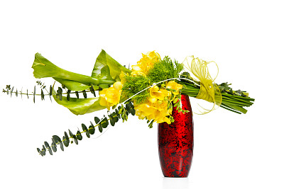 小苍兰,桉树,康乃馨,美,水平画幅,绿色,无人,蝴蝶结,背景分离,影棚拍摄