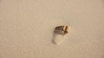 脚印,沙子,婴儿,旅游目的地,水平画幅,足,夏天,海滩,儿童