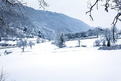 雪,冬天,山,地形,特伦蒂诺,水平画幅,无人,早晨,偏远的,户外