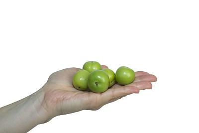 女人,绿色,手,李子,羊毛帽,青梅,饮食,水平画幅,水果