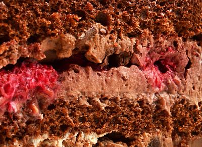 蛋糕,大特写,小团体,大于号,胡萝卜蛋糕,美洲山核桃,巧克力蛋糕,奶制品,褐色,水平画幅