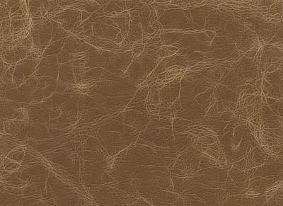 皮革,褐色,弄皱的,水平画幅,纺织品,无人,牛皮,材料,背景,纹理