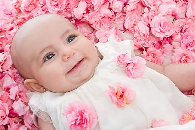 仅一朵花,婴儿,粉色,2到5个月,人类脚趾,拉美人和西班牙裔人,水平画幅,玫瑰,白人,完美