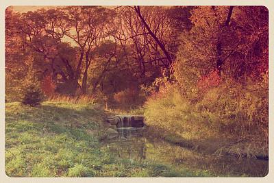 普诺斯佩克特公园,明信片,秋天,布鲁克林,水,古董,草原,水平画幅,风化的,瀑布