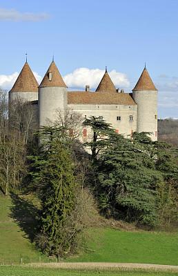 沃州,瑞士,城堡,特拉华,广州,自然,垂直画幅,草地,非都市风光,无人