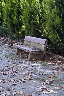 长椅,派克大街,空的路,垂直画幅,公园,褐色,座位,无人,椅子,古老的