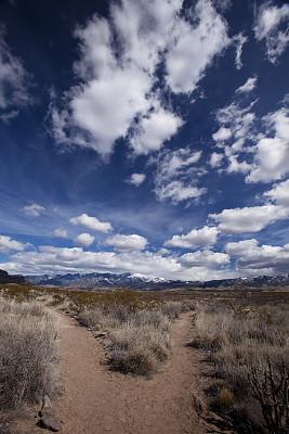 小路,徒步旅行,两只动物,塞拉利昂博朗峰,三水岩相学休养区,岔路口,垂直画幅,天空,雪,无人