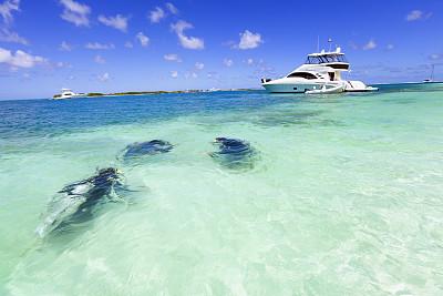 岛,绿松石,鸡尾酒,水中呼吸器,水上运动服,凹陷的,水,休闲活动,水肺潜水,水下