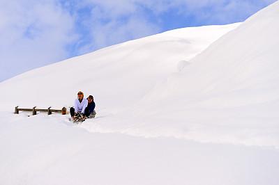 雪橇滑学,雪,青年女人,男人,动物拉雪橇比赛,天空,留白,休闲活动,旅行者,男性