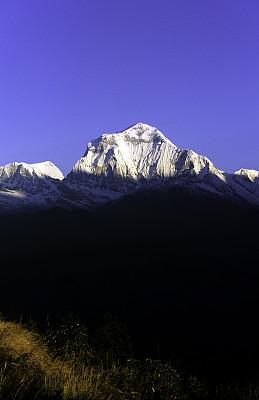 道拉吉利峰,甘达基,安纳普纳生态保护区,尼泊尔,时区,自然,垂直画幅,雪,无人,喜马拉雅山脉