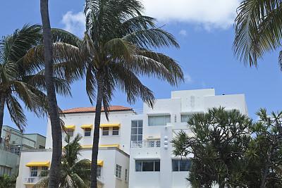 art deco风格,棕榈树,建筑外部,南部海滩,艺术装饰区,遮阳篷,水,天空,水平画幅,无人