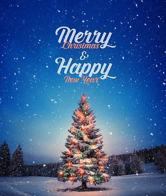 圣诞树,垂直画幅,贺卡,夜晚,雪,新年,早晨,标签,短语