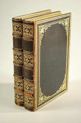 古董,书,皮革,绑扎了的,一对,垂直画幅,留白,文学,无人,古老的