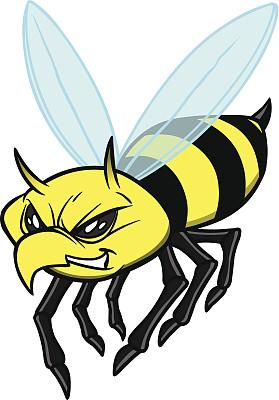 黄马褂,大黄蜂,茄克,黄色,运动,图像,动物,昆虫,矢量,蜜蜂