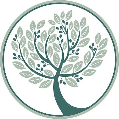 油橄榄树,橄榄,重新造林,边框,印度草医学,无人,树梢,绘画插图,符号,标签